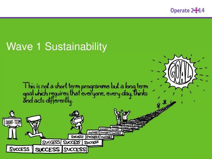 Wave 1 Sustainability