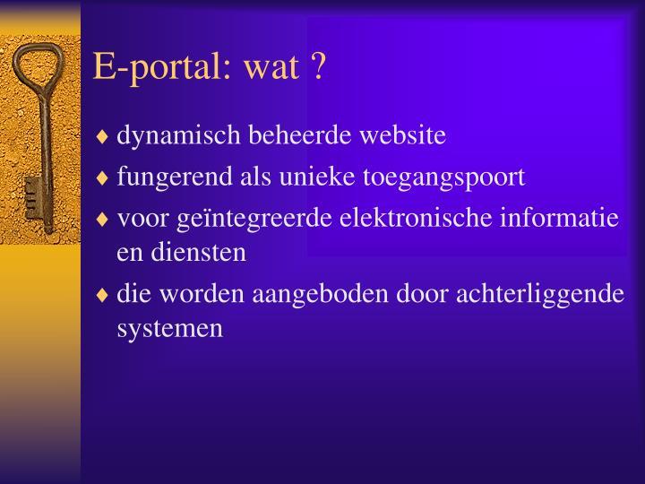 E-portal: wat ?