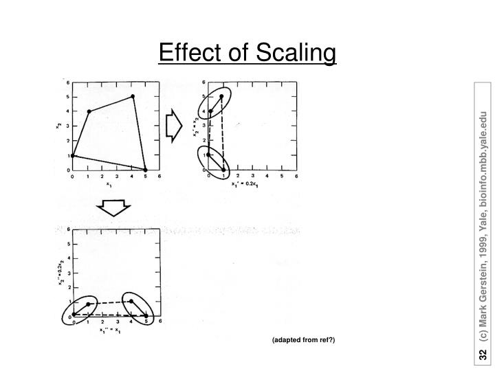 Effect of Scaling