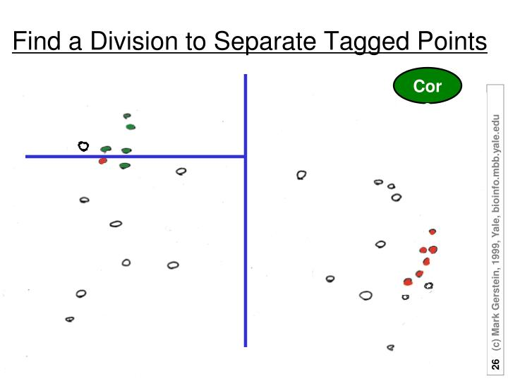 Find a Division to Separate Tagged Points