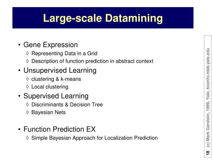 Large-scale Datamining