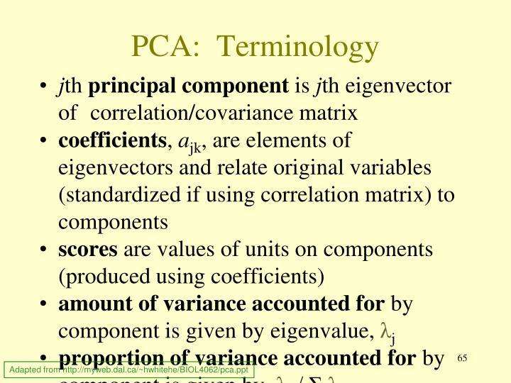 PCA:  Terminology