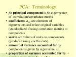 pca terminology