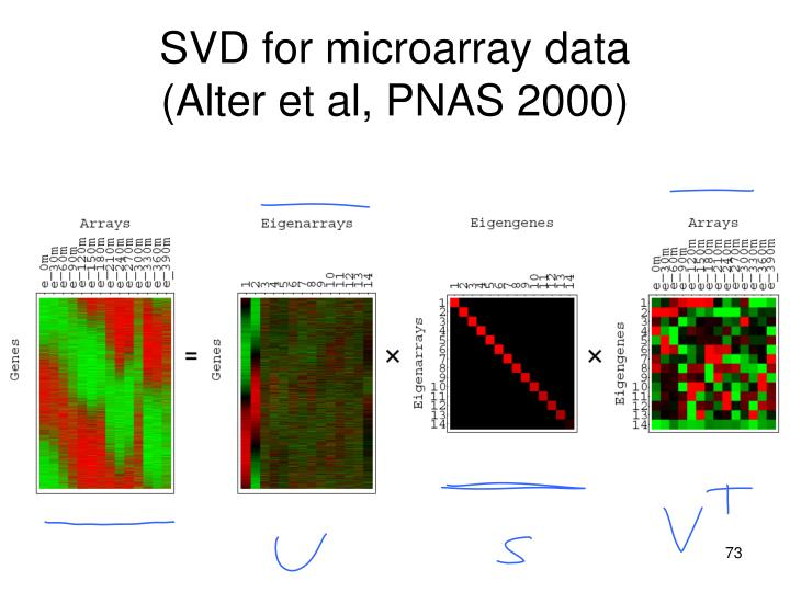 SVD for microarray data
