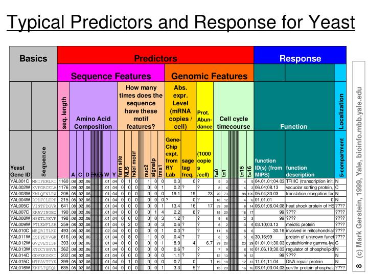 Typical Predictors and Response for Yeast