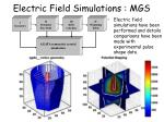 electric field simulations mgs