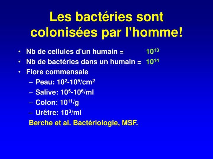 Les bactéries sont colonisées par l'homme!