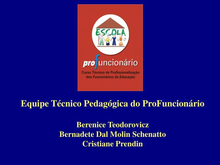 Equipe Técnico Pedagógica do ProFuncionário