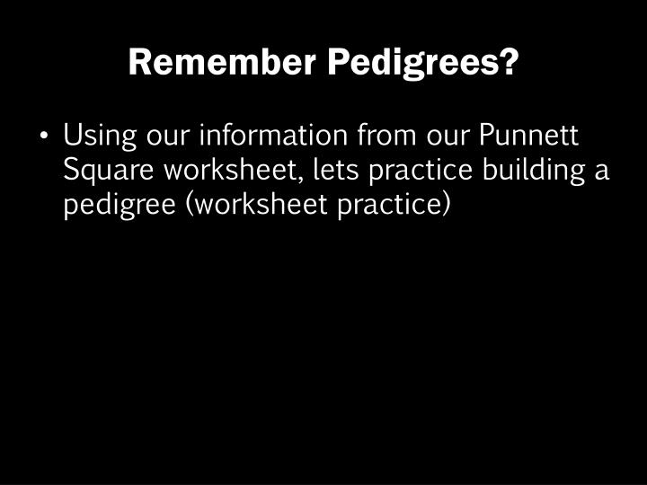 Remember Pedigrees?