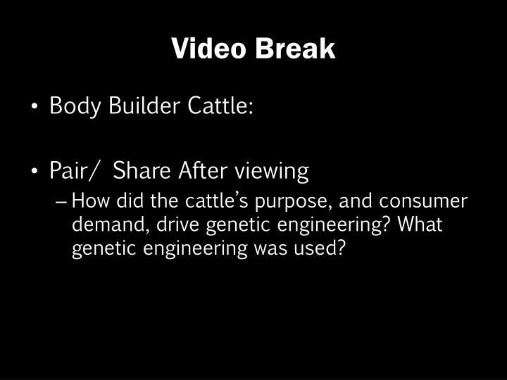 Video Break