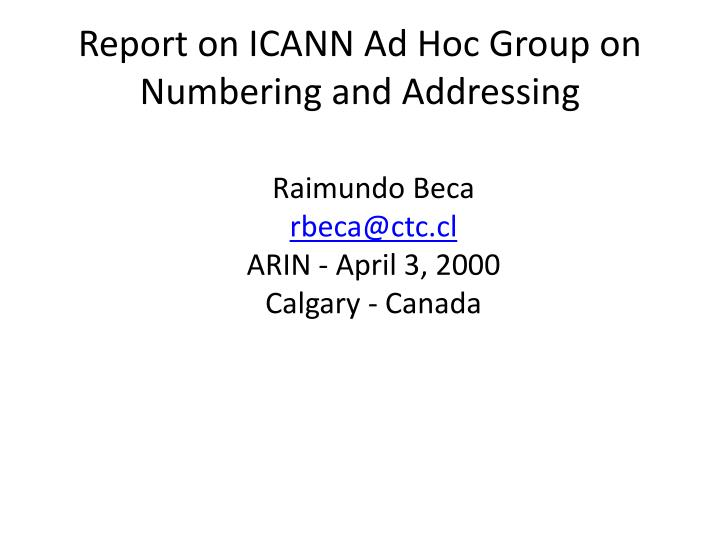 Report on icann ad hoc group on numbering and addressing