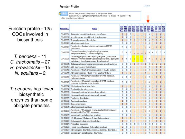 Function profile - 125 COGs involved in biosynthesis