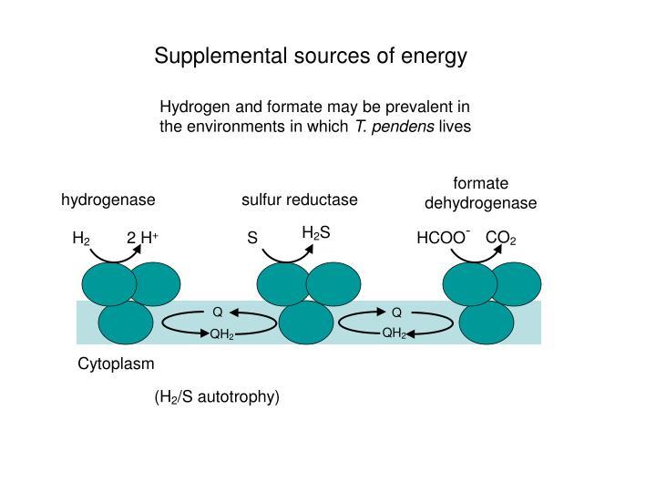 sulfur reductase