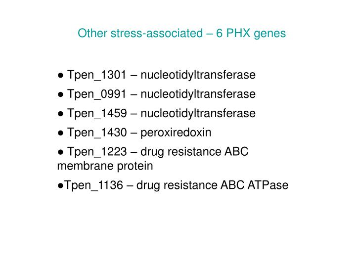 Other stress-associated – 6 PHX genes