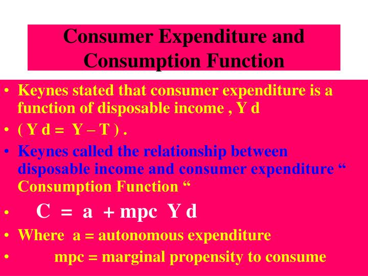 Consumer Expenditure and Consumption Function