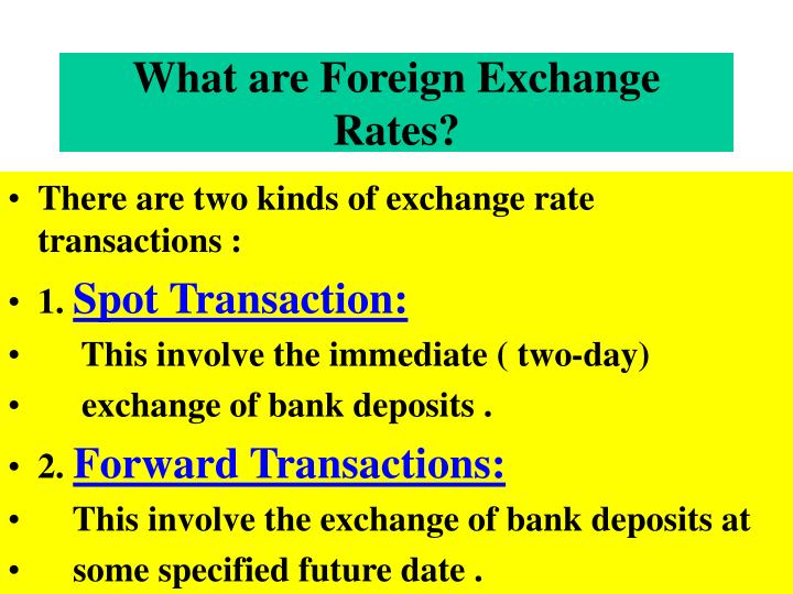 What are Foreign Exchange Rates?