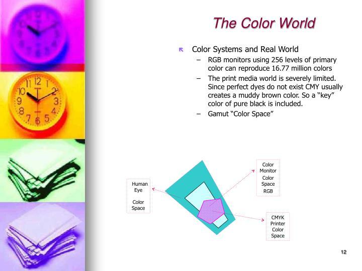 Color Monitor