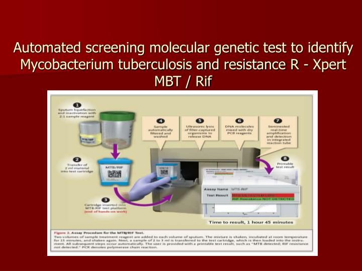 Automated screening molecular genetic test to identify Mycobacterium tuberculosis and resistance R - Xpert MBT / Rif
