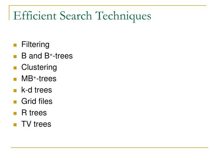 Efficient Search Techniques