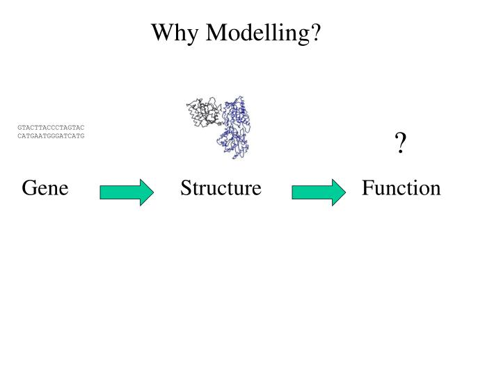 Why Modelling?