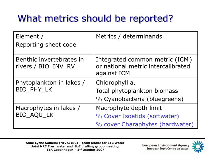 What metrics should be reported?