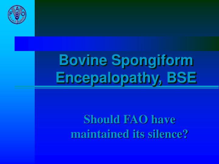 bovine spongiform encepalopathy bse