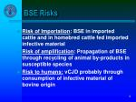 bse risks