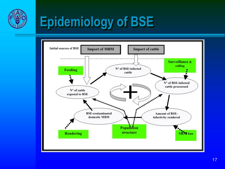 Epidemiology of BSE