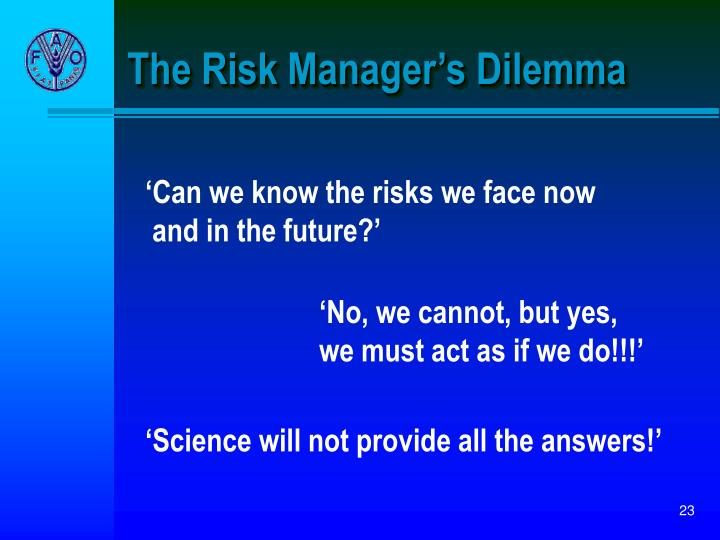 The Risk Manager's Dilemma