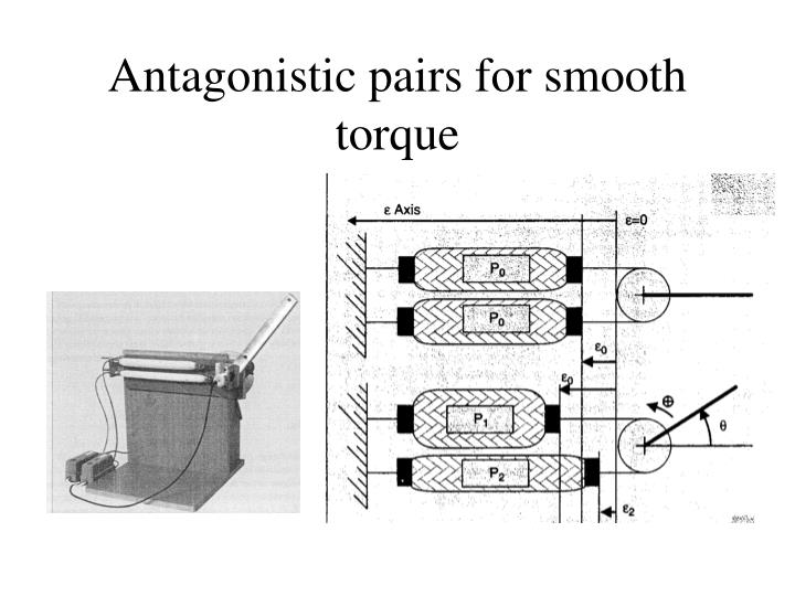 Antagonistic pairs for smooth torque