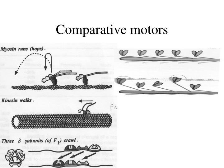 Comparative motors