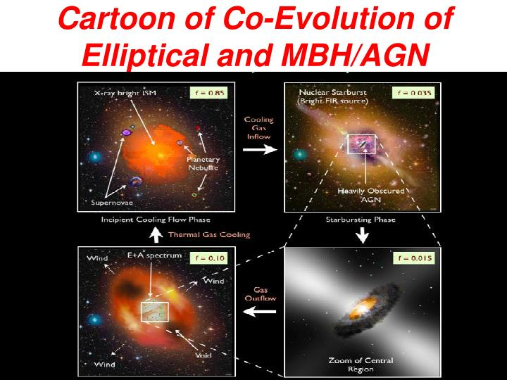 Cartoon of Co-Evolution of Elliptical and MBH/AGN