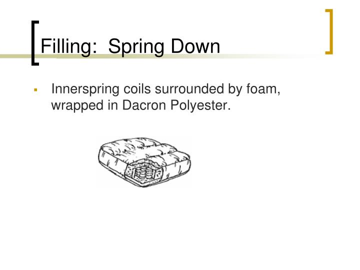 Filling:  Spring Down