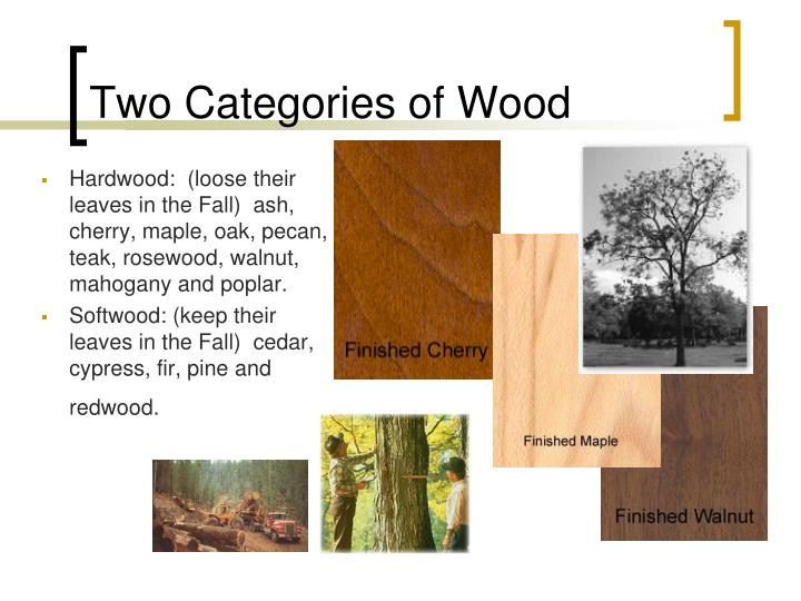 Two Categories of Wood