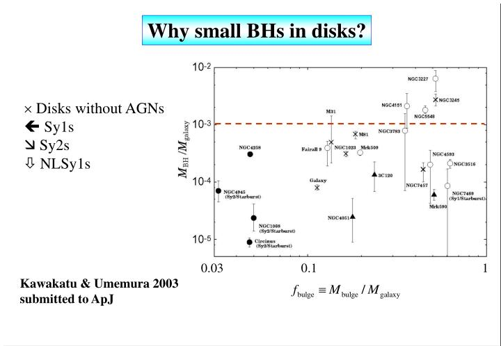 Why small BHs in disks?
