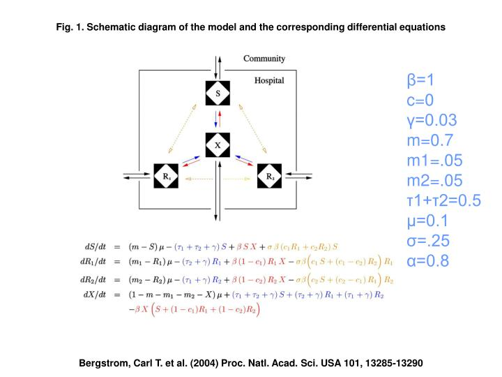 Fig. 1. Schematic diagram of the model and the corresponding differential equations