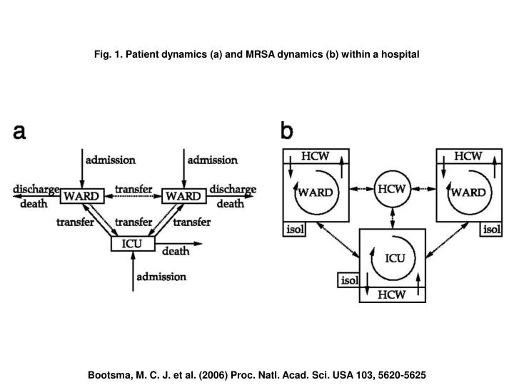 Fig. 1. Patient dynamics (a) and MRSA dynamics (b) within a hospital