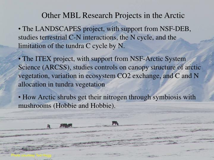 Other MBL Research Projects in the Arctic