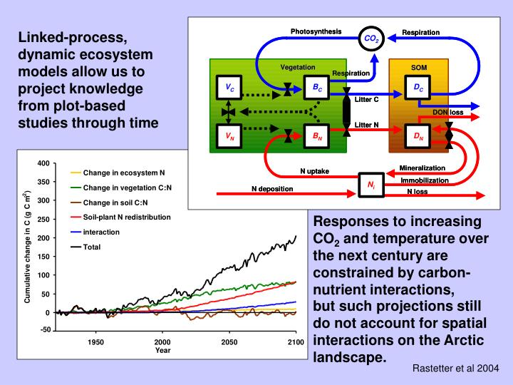 Linked-process, dynamic ecosystem models allow us to project knowledge from plot-based studies through time