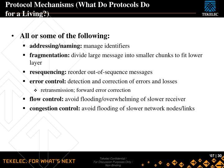 Protocol Mechanisms