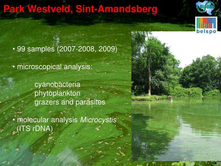 Park Westveld, Sint-Amandsberg