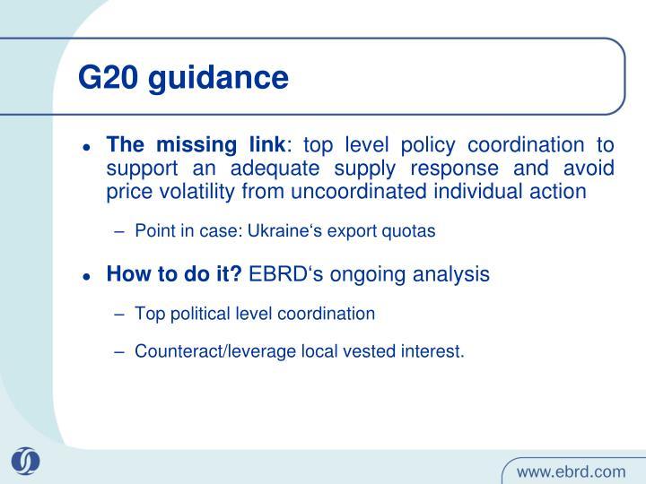 G20 guidance
