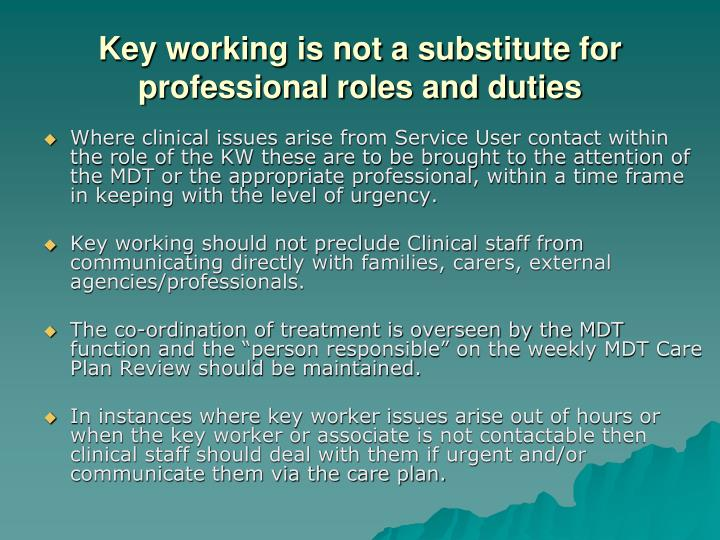Key working is not a substitute for professional roles and duties