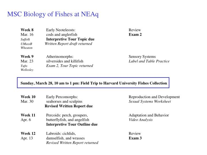 MSC Biology of Fishes at NEAq