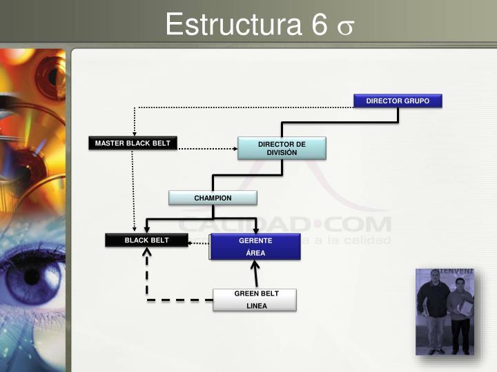 Estructura 6