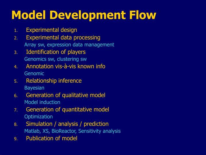 Model Development Flow
