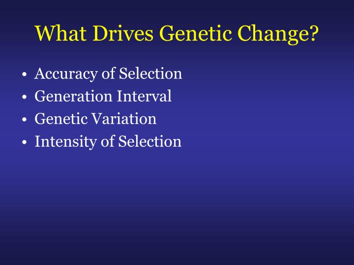 What Drives Genetic Change?