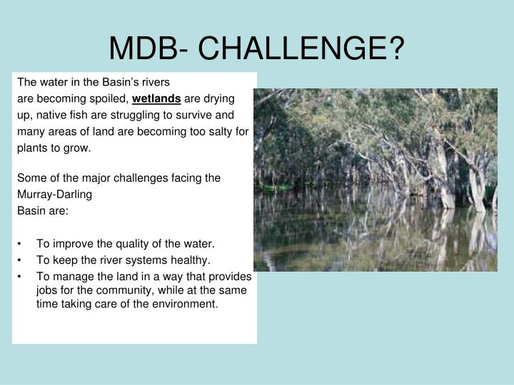 MDB- CHALLENGE?