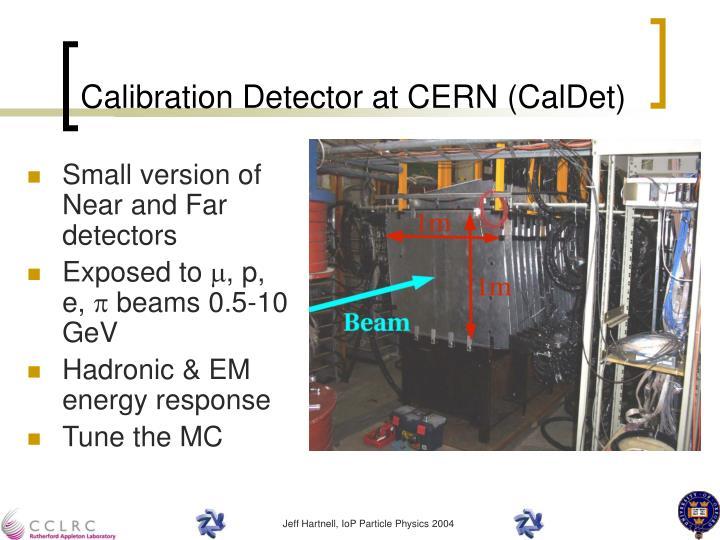 Calibration Detector at CERN (CalDet)