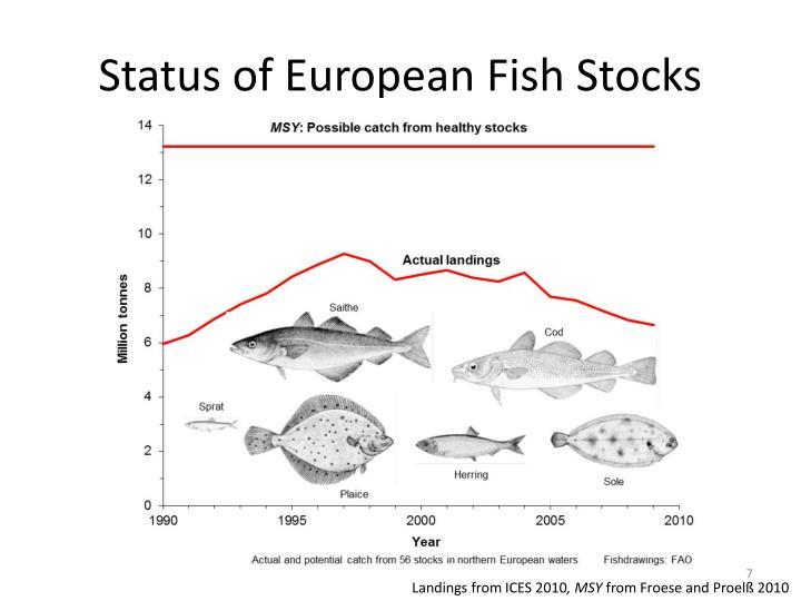 Status of European Fish Stocks